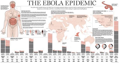 ebola virus outbreak 2014 truth about ebola outbreak infographic infographicspedia