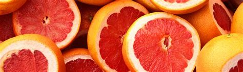 can dogs eat grapefruit can bearded dragons eat grapefruit facts