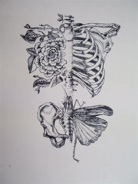 bones tattoo designs skeleton fresh ideas