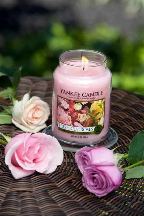 yankee candle fan club login spring photo 25263903 fanpop
