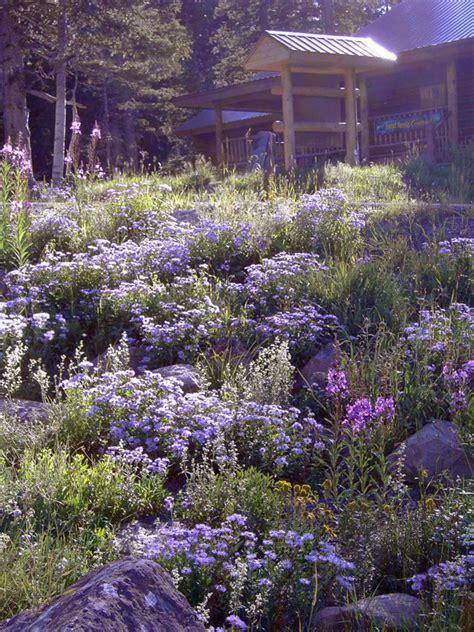 design center colorado springs home and garden design center colorado springs homemade