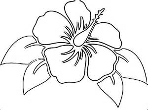 coloring pictures of hibiscus flowers free coloring pages of hibiscus flowers az coloring pages