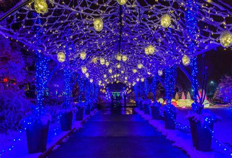 light show christmas lights winter winter flower show and light garden magic phipps conservatory and botanical gardens