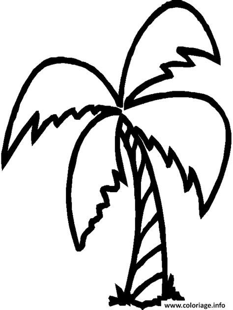 Coloriage Palmier Avec 4 Branches Dessin