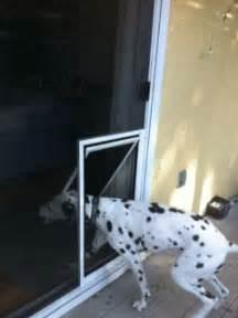 Doors pet screen door for sliding screen doors dogs and cats