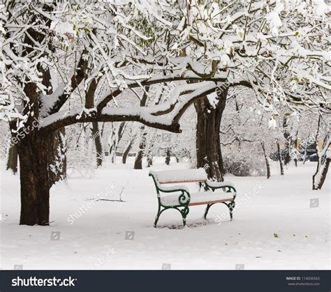 bench in snow bench park snow winter stock photo 114056563 shutterstock