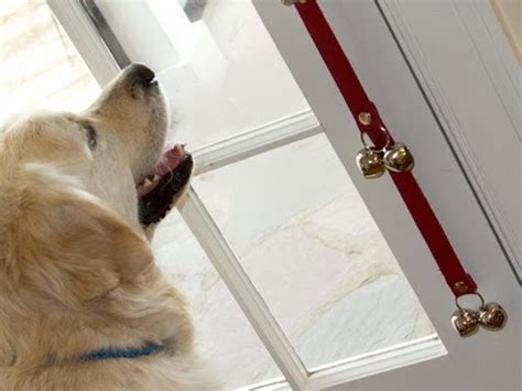 dog house training bell dog doorbell from poochie bells for dog house training