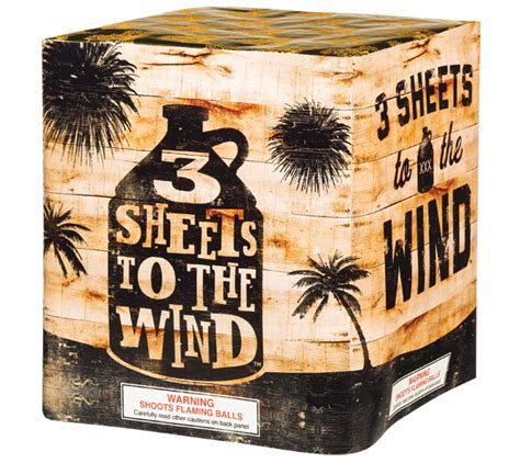 three sheets to the wind one s quest for the meaning of books 500 gram