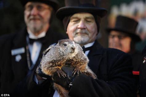 groundhog day uk tv thousands await us groundhog day prediction daily