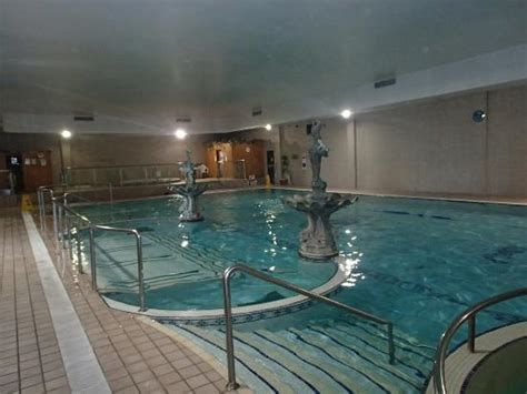 best western dublin sheldon park hotel swimming pool with whirl picture of