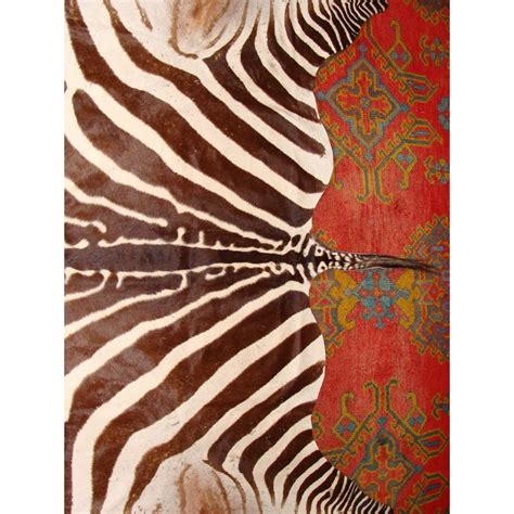 authentic zebra skin rug zebra skin rug in excellent condition