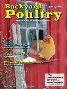 backyard chicken magazine my farm on 119 pins