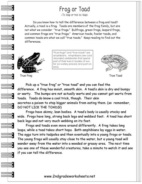 non fiction biography reading lesson beyond the words 15 best images of informational nonfiction worksheets