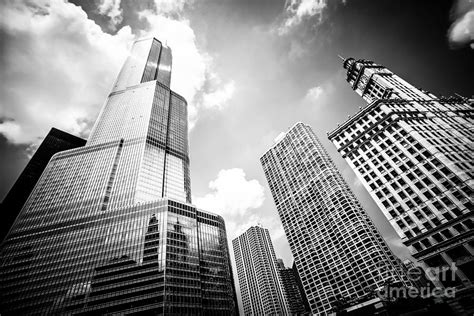 black and white picture of chicago new and buildings photograph by paul velgos
