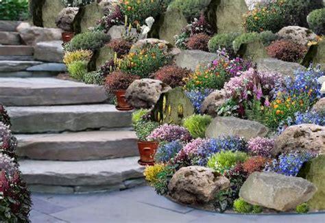 piante e giardini nei giardini rocciosi le piante grasse ed i fiori regnano