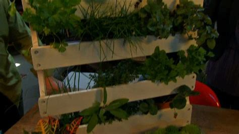 make your own herb rack the live well network