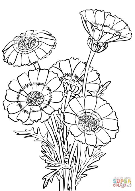 chrysanthemum mouse coloring page beautiful chrysanthemum coloring page clip art of a flower