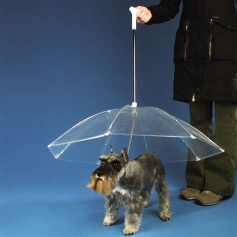 puppy umbrella umbrella gift just reward pet hers