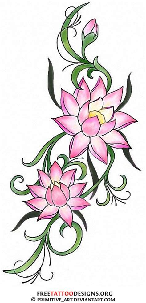 water lily tattoo designs births flower and lotus on