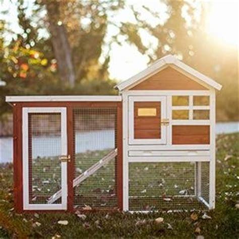 advantek stilt house rabbit hutch amazon com advantek the stilt house rabbit hutch garden outdoor