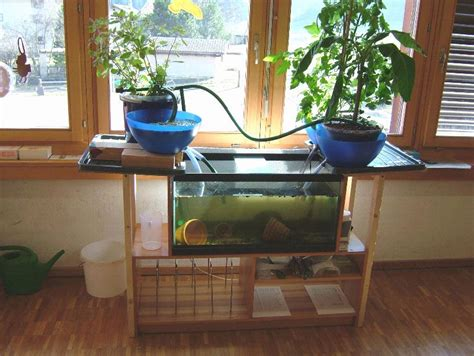 Backyard Aquaponics System by Aquaponics Diy Ideal Solution For A Limited Space Garden