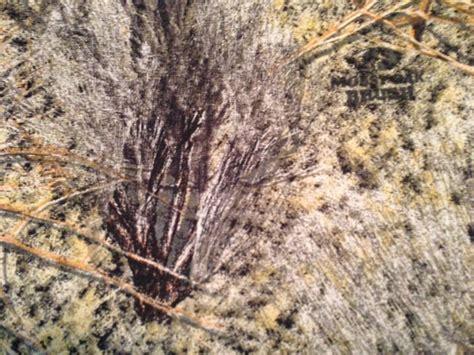 brush pattern camo mossy oak brush cotton sheeting camouflage fabric at