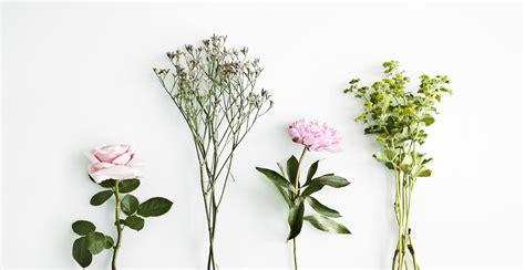 decoracion con flores secas flores secas un aire rom 225 ntico para tu casa westwing