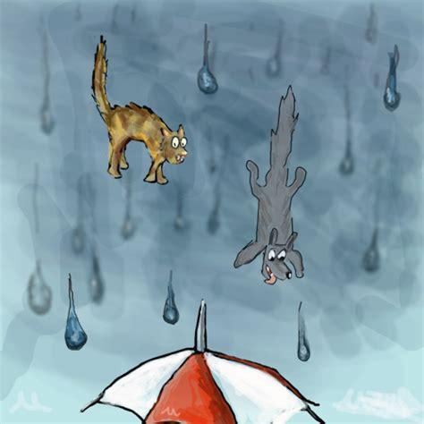 raining cats and dogs vivre sa vie raining cats dogs