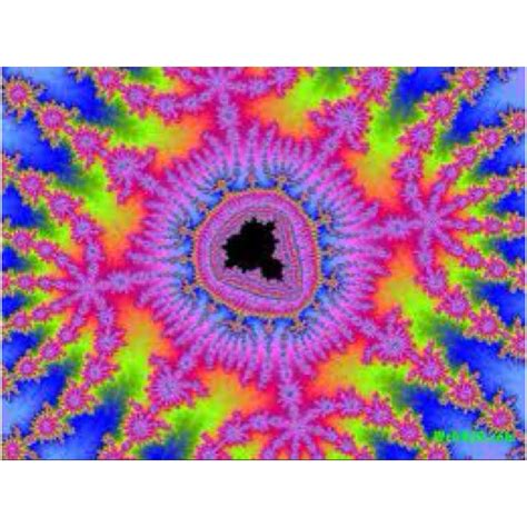 fractal pattern theory 20 best images about mandelbrot on pinterest zoom