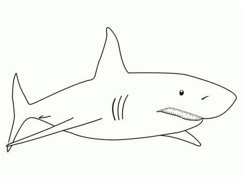 imagenes para colorear tiburon tibur 243 n