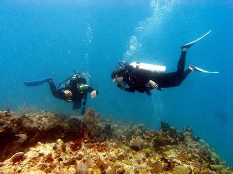 Padi Course padi divemaster course captain hook s marina dive