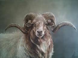 Bild Selber Malen 4485 by 78 Besten Kunst Bilder Auf Painting Tiere Und