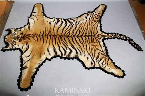 tiger skin rugs tiger skin rug www imgkid the image kid has it