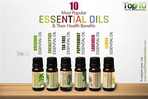 essential oils for everyday household using the best beginners guide book with 50 useful non toxic and time saving home made essential oils recipes essential oils book books 10 most popular essential oils and their health benefits