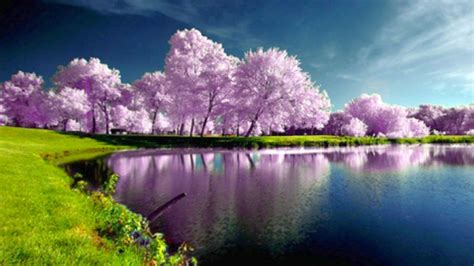 spring landscape spring nature wallpapers