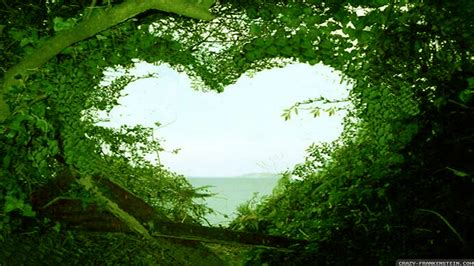 beautiful love nature wallpaper hd desktop wallpapers love