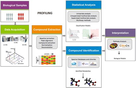 Untargeted Metabolomics Workflows | Thermo Fisher Scientific