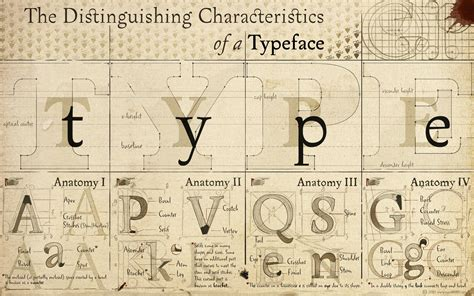 typography anatomy anatomy typography font alphabet drawings diagram typefaces wallpaper 1920x1200 19871