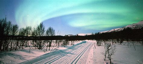 bodo northern lights northern lights in bodo harstad 171 baltic