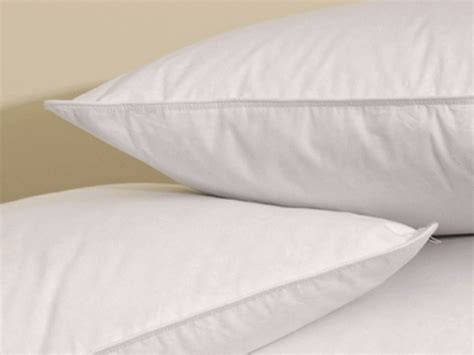 Pacific Coast Pillows Hotel Collection by Pacific Coast Surround Standard Jumbo Pillow