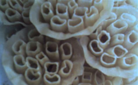 Cetakan Kembang Goyang Bunga 65cm riezanie s recipe collections kembang goyang aka kuih bunga ros