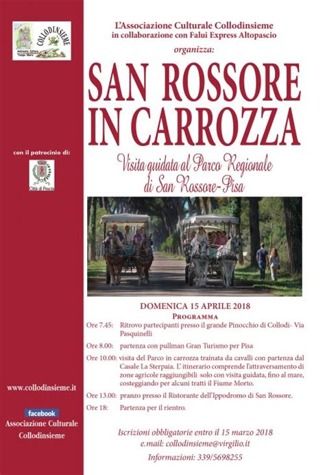 san rossore in carrozza san rossore in carrozza collodinsieme