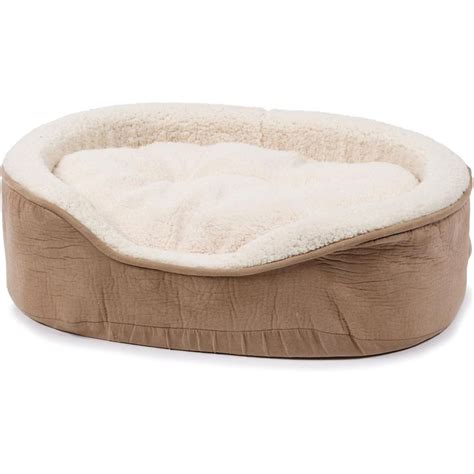 petco cat beds pinterest