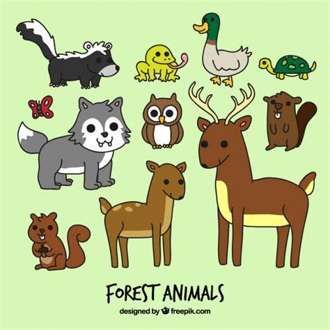 imagenes vectores de animales set de animales del bosque de dibujos animados descargar