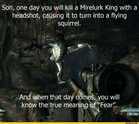 Funny Fallout Memes - fallout funny pinterest