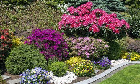 piante da giardino resistenti piante da giardino resistenti al freddo ecco le pi 249 adatte