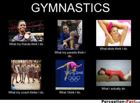Gymnastics Memes - gymnastics what people think i do what i really do perception vs fact