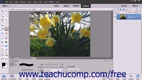 adobe photoshop tutorial using clone st tool photoshop elements 15 tutorial the clone st tool adobe