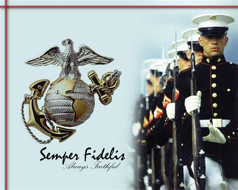 Where To Buy Toaster Covers Semper Fi By Xtoasterthebrave On Deviantart