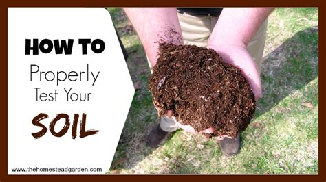 how to properly your how to properly test your soil the homestead garden the homestead garden